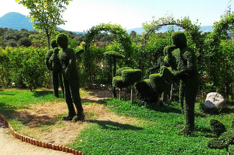El bosque encantado de san mart n de valdeiglesias sala for Jardin botanico el bosque encantado