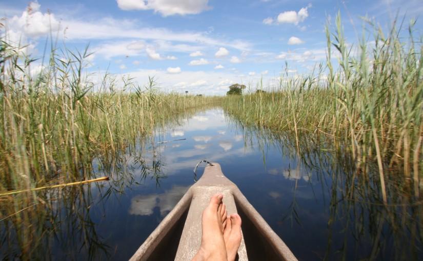 Travesía por el Delta de Okavango, en Botswana