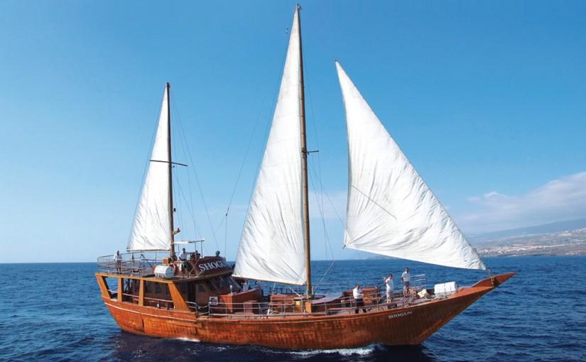 Navegando en el SHOGUN